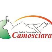 Camosciara Escursioni e Trekking nel Parco Nazionale d'Abruzzo.
