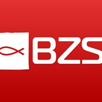 BZS Trading