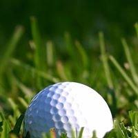 Golf Druento Campo Pratica i Merli