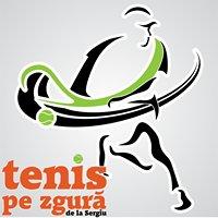 Tenis pe zgură