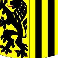 Stadtrat Dresden