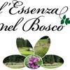 L'essenza nel Bosco