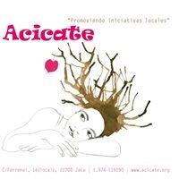 Acicate