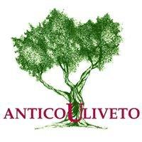 Antico Uliveto Versilia