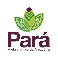 Visit Pará