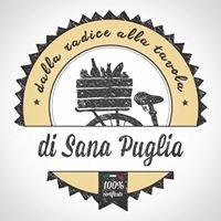 di Sana Puglia - Dalla radice alla tavola