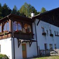 Eggerhof schnauzerstube