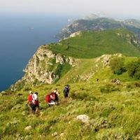 Trekking Penisola Sorrentina