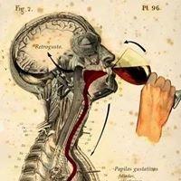 Prosecco Bistro & Wine Bar