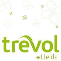 Trèvol Lleida