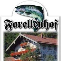 Forellenhof Eisenärzt