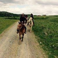 Castellare di Tonda Horse Riding Holidays