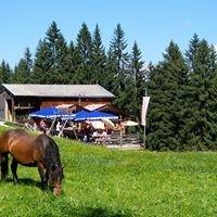 Jausenstation Frankalm, Brixen im Thale