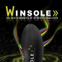 Winsole - die Radschuh-Einlage