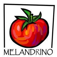 Melandrino