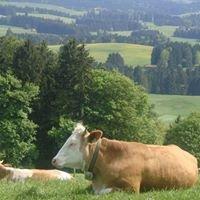 Bauernhof und Landurlaub im Pfaffenwinkel und Ammersee/Lech e. V.