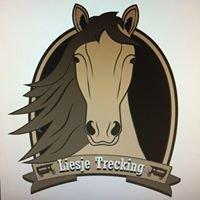Liesje Trecking