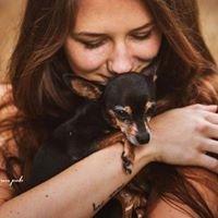 Janis Jean Stoye - Animals & Emotions