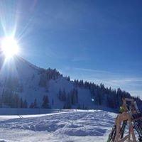 Wiedhag-Alpe