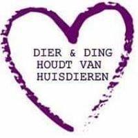 DierenDing Hoogzandveld