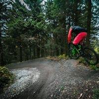 Board N Bikes
