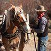 Alderspring Ranch Grassfed Organic Beef