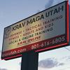 Unified Krav Maga