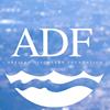Artisan Discovery Foundation