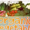 CERES Organic Market & Grocery