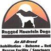 Ragged Mountain Dogs