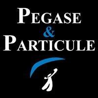Pegase et Particule