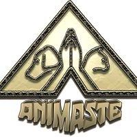 Animaste, Gedrag, opvoeding, training van honden/katten