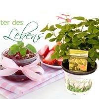 Kräuter des Lebens - Wurster Blumen & Pflanzen