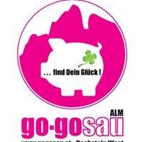 Go-Gosau Alm