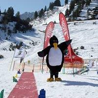 Skischule Top