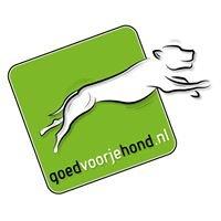 Goedvoorjehond.nl