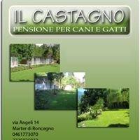 Pensione per cani Trentino