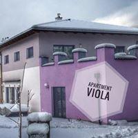 Apartment.Viola Altenmarkt-Zauchensee