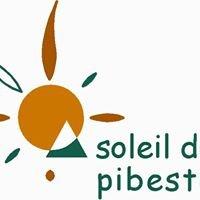 Camping Pyrénées Soleil du Pibeste - Location chalet Argeles Gazost Lourdes