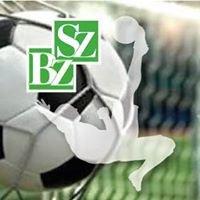 SZ/BZ Soccerarena