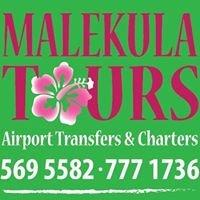 Malekula Tours