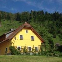 Ferienhof Hintergrabenbauer - Urlaub am Bauernhof