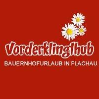 Vorderklinglhub Appartements am Bauernhof in Flachau