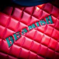 Beamish Transport Ltd