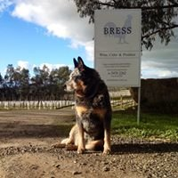 Bress Winery