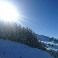 Schischule Alpin Profis
