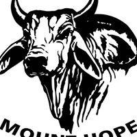 Mount Hope Adventures