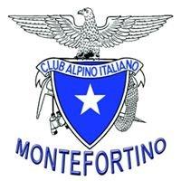 Cai Montefortino