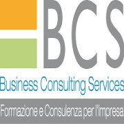 Business Consulting Services Srl