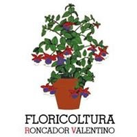 Floricoltura Roncador Valentino